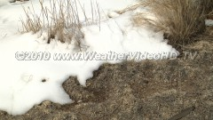 Spring Snow Melt Drifts from a spring snow storm depart in strong sunshine and dry wind
