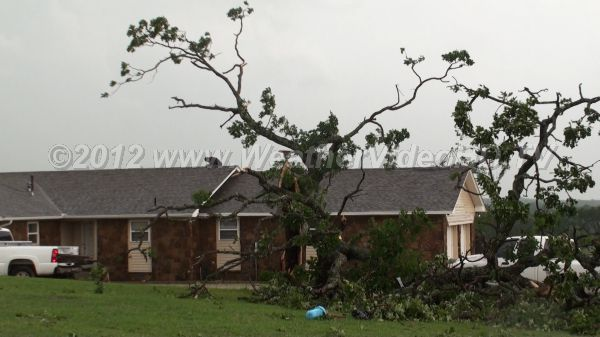 Storm Damage Tree branches down and minor roof damage - typical of severe thunderstorm or very week tornado winds