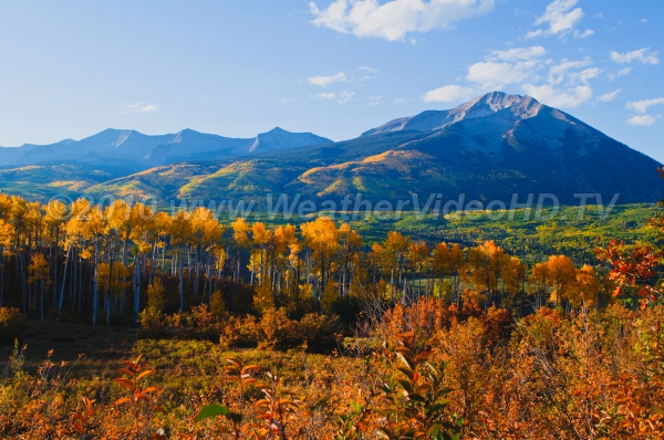 Golden Valley Aspen groves decorate a Rocky Mountain valley with seasonal colors