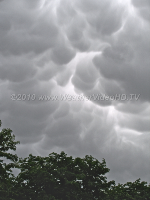 Mammatus Sky Not necessarily a sign of severe weather - but many severe storms do have mammatus