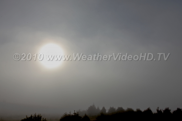 Foggy Sunrise Sun glows as it shines through thin layer of fog and stratus clouds